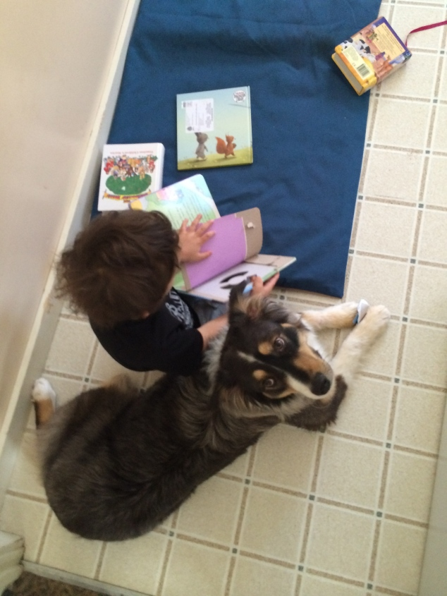 I found Harper reading one of his kid Bibles to Khaleesi in the kitchen. She pretended to be entertained.